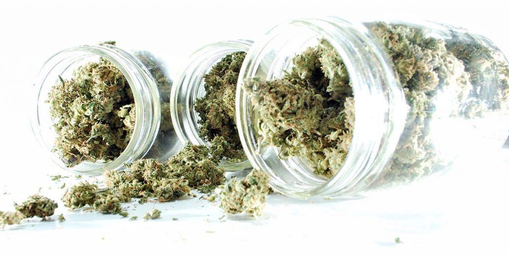 всушеная марихуана
