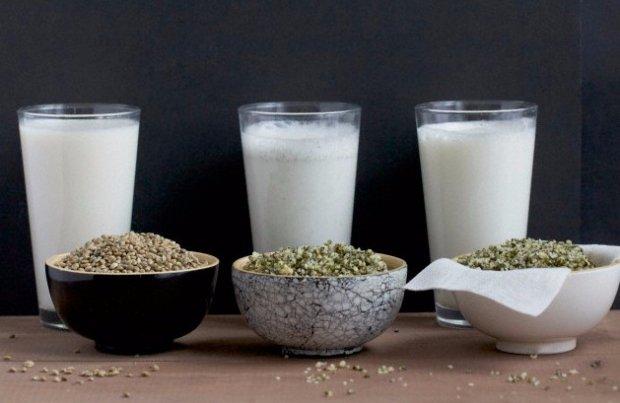 конопляное молоко как варить
