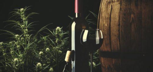 конопляное вино