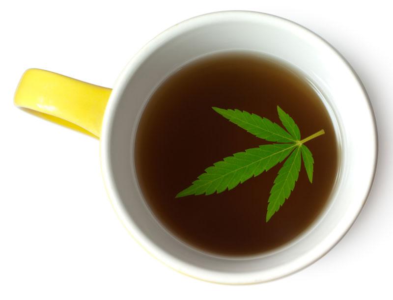 Полить чаем коноплю как получит разрешение на выращивание конопли украина