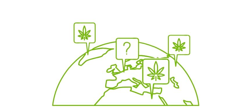 легализация-каннабис-новости